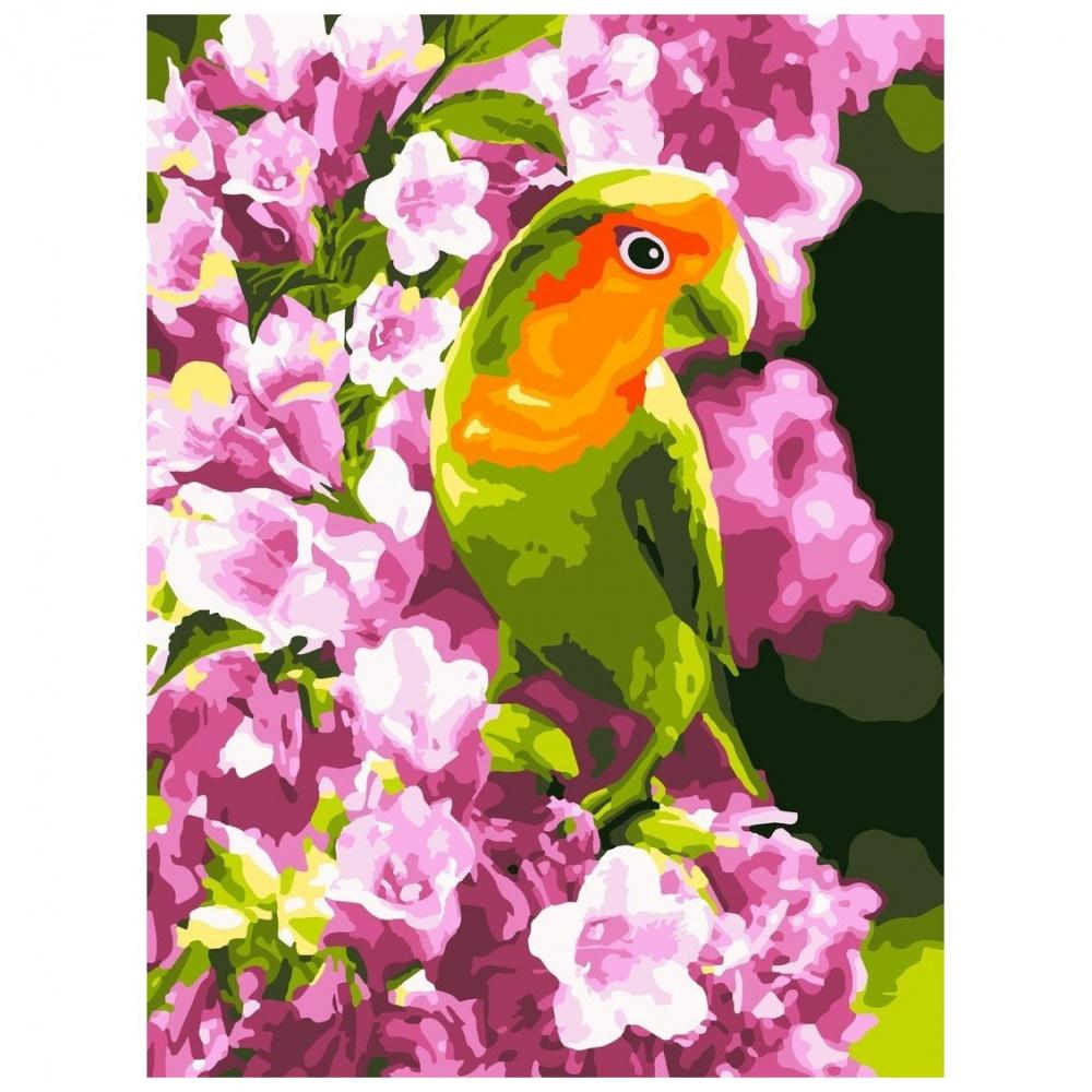 Фото - Картина по номерам Lori Весенний попугайчик, 38х28,5 см картина по номерам lori любопытный щенок 28 5х20 см
