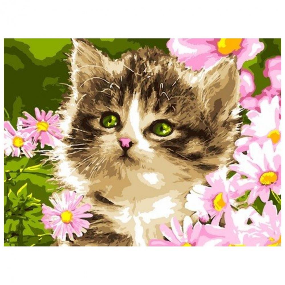 Фото - Картина по номерам Lori Полосатый котёнок, 38х28,5 см картина по номерам lori любопытный щенок 28 5х20 см