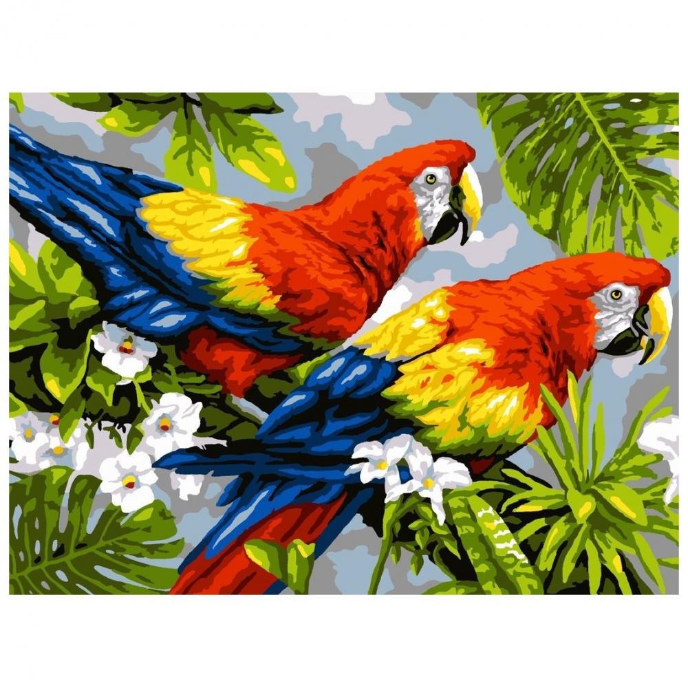Фото - Картина по номерам Lori Пара попугаев, 38х28,5 см картина по номерам lori любопытный щенок 28 5х20 см